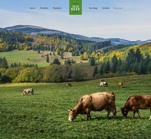 Be-Eco Beef