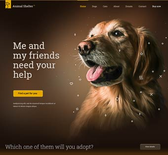 Be Animal Shelter – PET